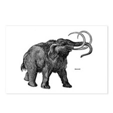 Mammoth Postcards (Package of 8)