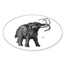 Mammoth Oval Decal