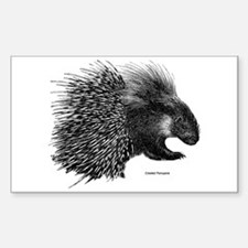 Crested Porcupine Rectangle Decal