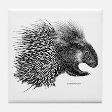 Crested Porcupine Tile Coaster