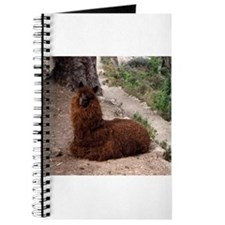 CUTE ALPACA Journal