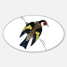 Goldfinch Oval Decal