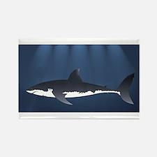 Danger Shark Below Magnets