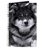 Grey wolf in snow Journals & Spiral Notebooks