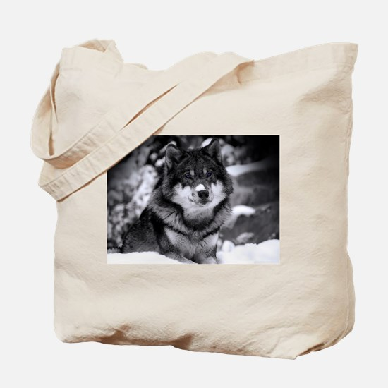 Grey Wolf In Snow Tote Bag