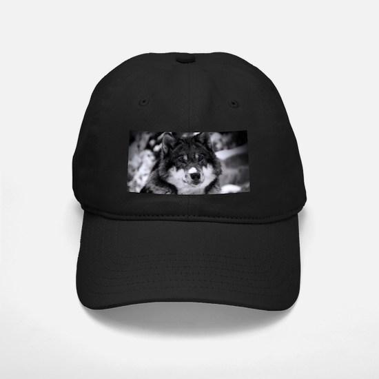 Grey Wolf In Snow Baseball Cap
