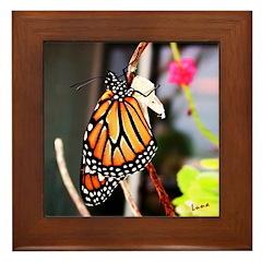Can't Let Go Framed Photo Tile