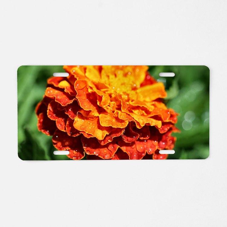Cute Marigolds Aluminum License Plate
