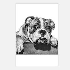 Bulldog Head Vintage-1 Postcards (Package of 8)