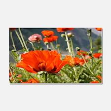 bold red poppy flower Car Magnet 20 x 12