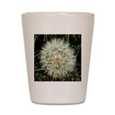 Cute Dandelion Shot Glass
