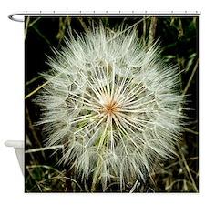 Cute Dandelion Shower Curtain