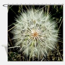 Cute Dandelion art Shower Curtain