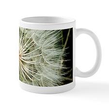 Puffball Closeup Mugs