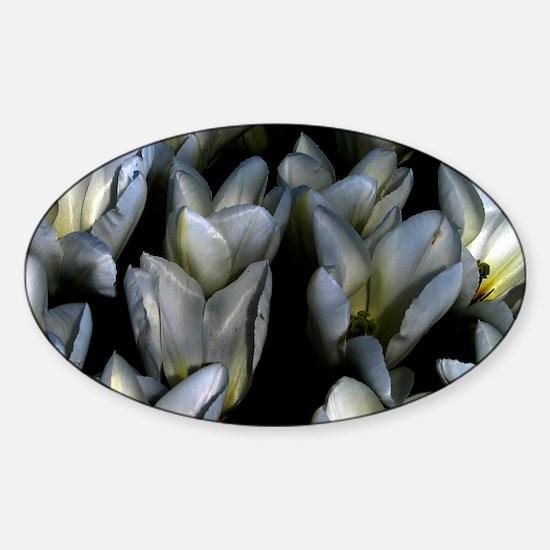 Gothic Tulip Decal