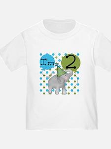 Elephant 2nd Birthday T
