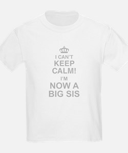 I Cant Keep Calm! Im Now A Big Sis T-Shirt