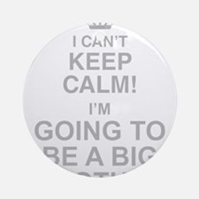 I Cant Keep Calm! Im Going To Be A Big Brother Rou