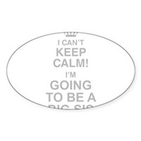 I Cant Keep Calm Im Going To Be A Big Sis Sticker