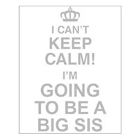 I Cant Keep Calm Im Going To Be A Big Sis Posters