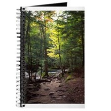 Forest Dawn Journal