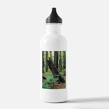 Mossy Giant Water Bottle