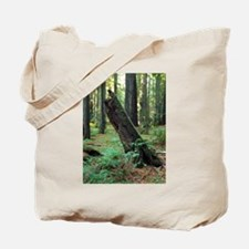 Mossy Giant Tote Bag