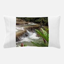 Tropical Falls Pillow Case