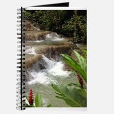 Tropical Falls Journal