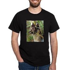 Watchful Fox T-Shirt