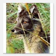 """Watchful Fox Square Car Magnet 3"""" x 3"""""""