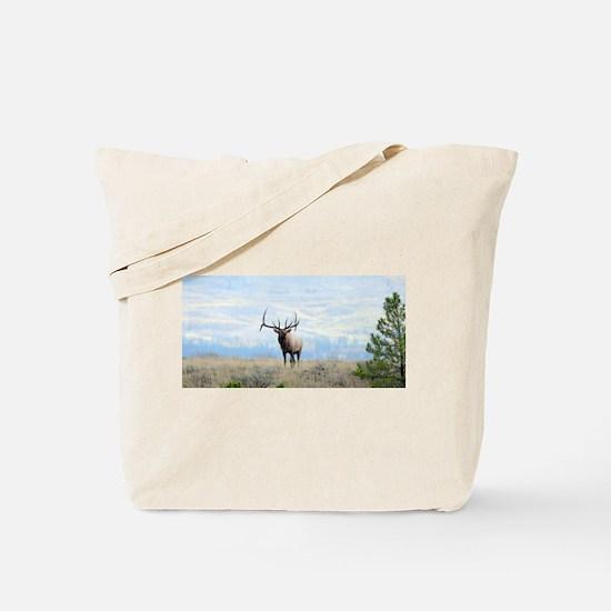 Rocky Mountain Elk Tote Bag