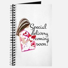 Special Delivery Journal