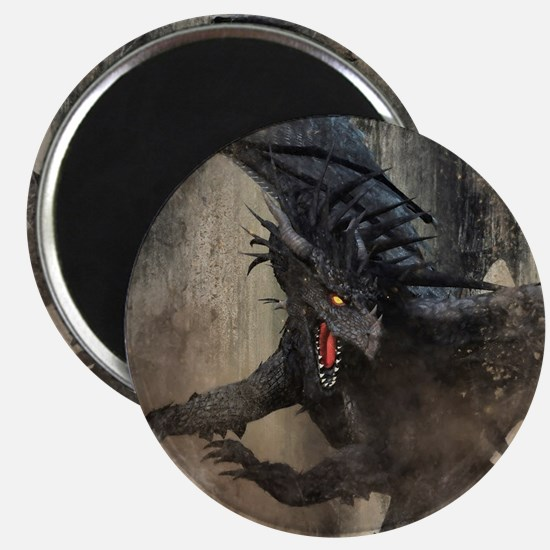 Black Dragon Magnets