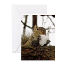 Squirrel Snowcone Greeting Cards
