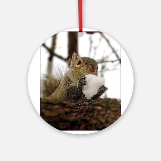 Squirrel Snowcone Round Ornament