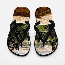 Tuscany Flip Flops