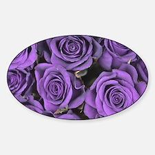Purple Roses Sticker (Oval)
