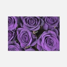Purple Roses Rectangle Magnet