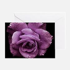 Purple Roses Greeting Card