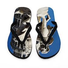 Pisa Flip Flops