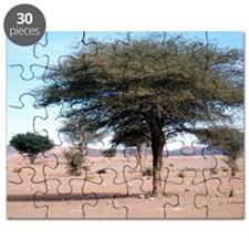 Morocco desert Puzzle