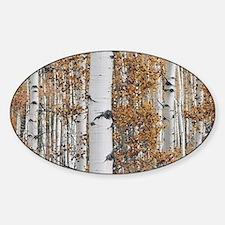 Aspen Sticker (Oval)