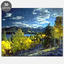 Aspen Puzzle