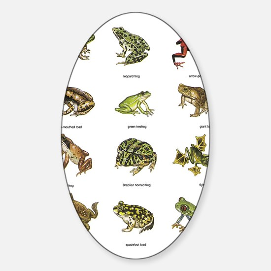 Frog and Toad Decal