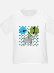 Elephant 1st Birthday T