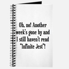 read infinite jest Journal