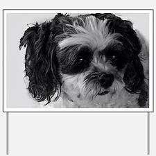 Black Gray White Shih Tzu Poodle Mix Yard Sign