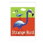 Strange Bird - Flamingo Postcards (Package of 8)