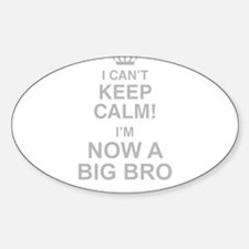 I Cant Keep Calm! Im Now A Big Bro Decal